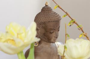 Frühlings-Buddha